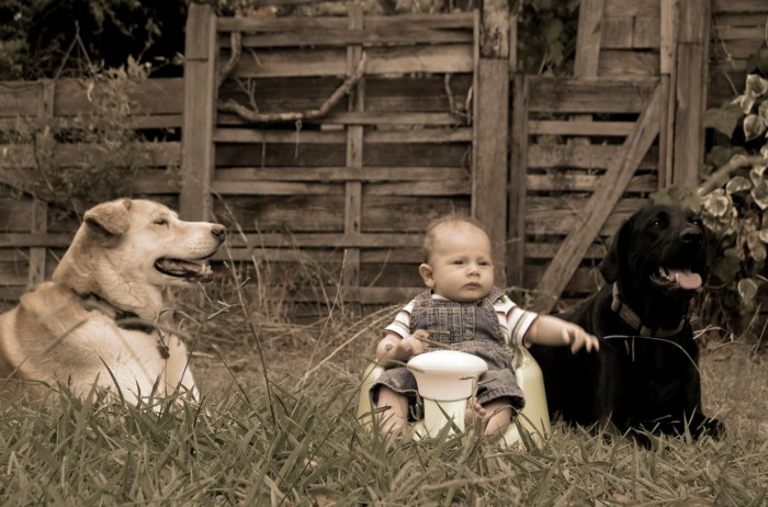 (Furry) Family Portrait
