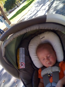 Ronin chillin' at the park with Papa